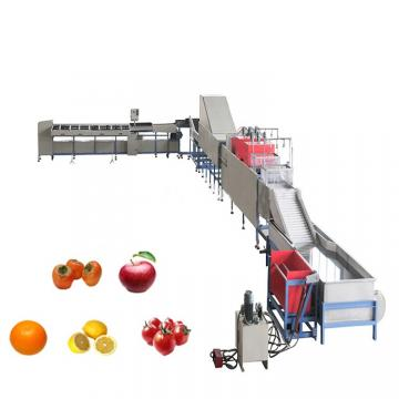 Apple Washing Line Air Bubble Fruit Vegetable Washer Vegetable cleaning machine potato bubble cleaning